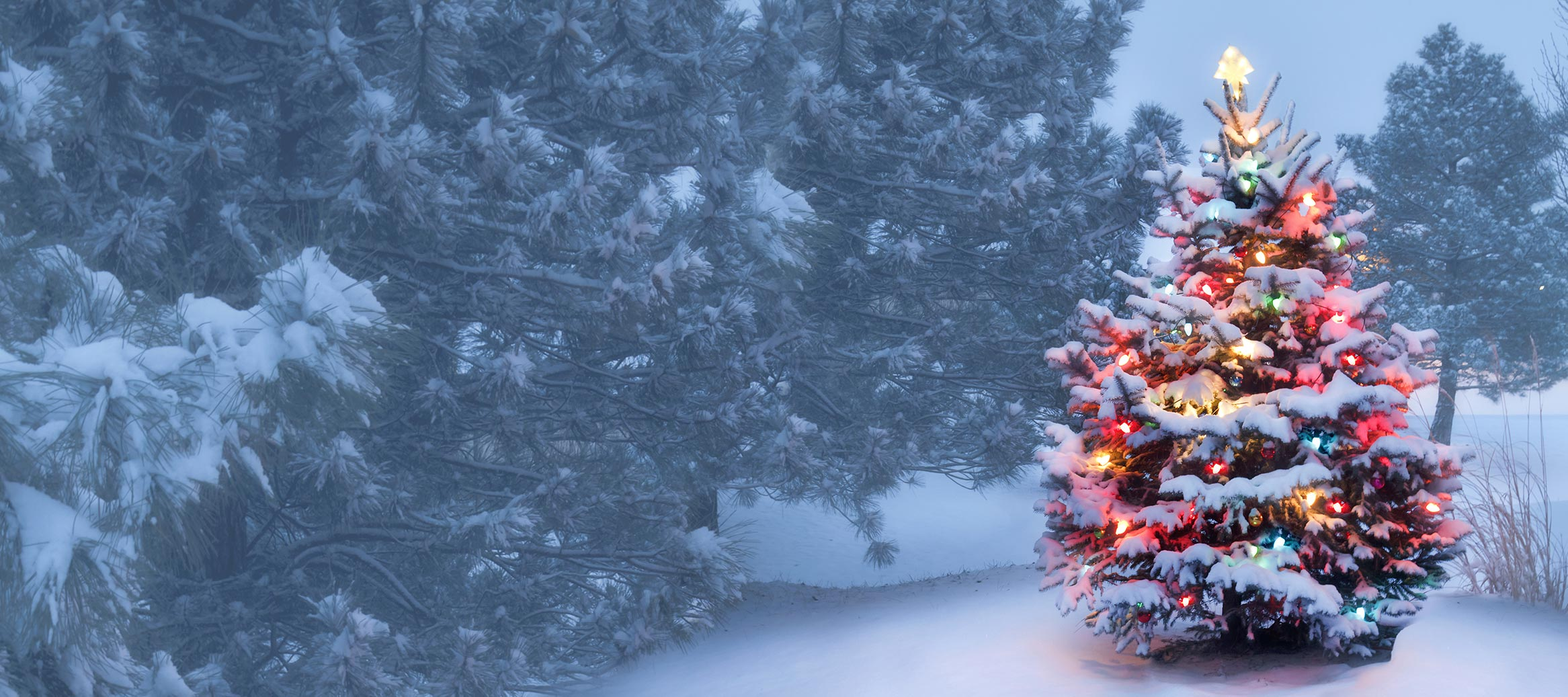 Le Premier Noël Sans Toi